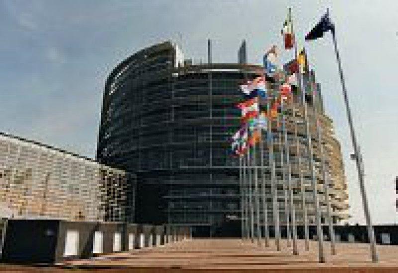 Im Europaparlament in Straßburg wurde das sechste EU-Rahmenforschungsprogramm verabschiedet. Foto: Europaparlament