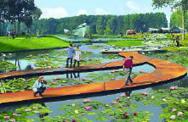 Ein großzügiger Wasserlilienteich ist durch schwimmende Wege begehbar. Eine einmalige Gelegenheit zu detaillierten Naturbeobachtungen Fotos: Floriade Archiv