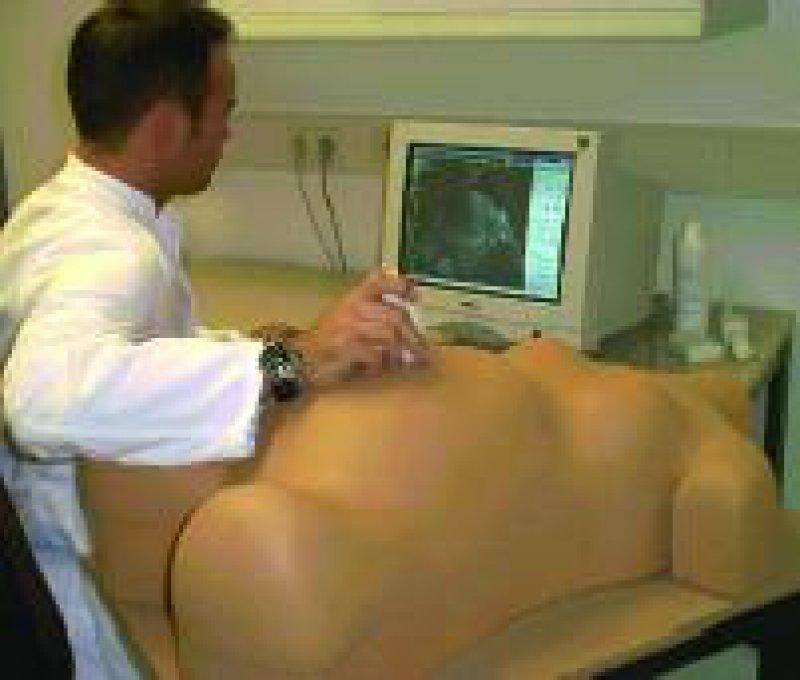 Mit dem Ultraschallsimulator können Pathologien dargestellt werden, und der Übende kann trainieren. Werkfoto