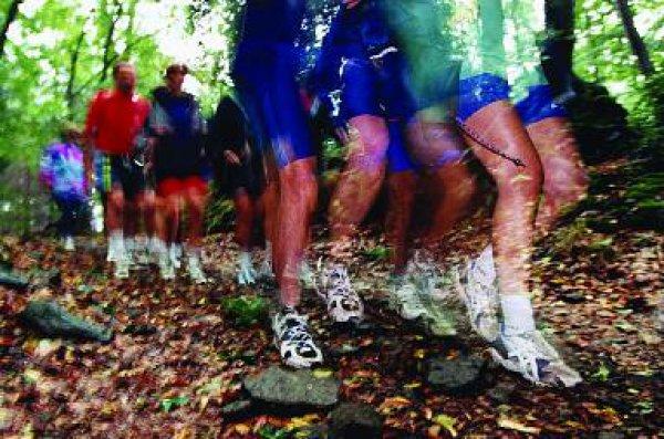 Fitness und Wellness – das Leben wird prozessualisiert als Vitalisierung ohne Ende. <br>Foto: DAK