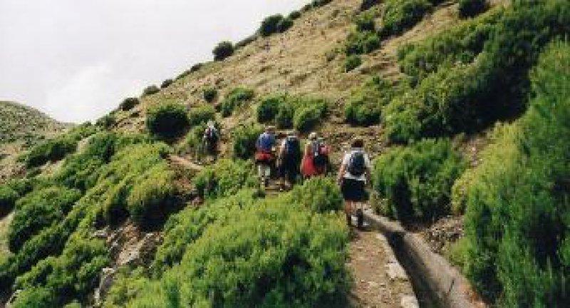 Wanderung entlang einer Levada im Hochgebirge. Foto: privat