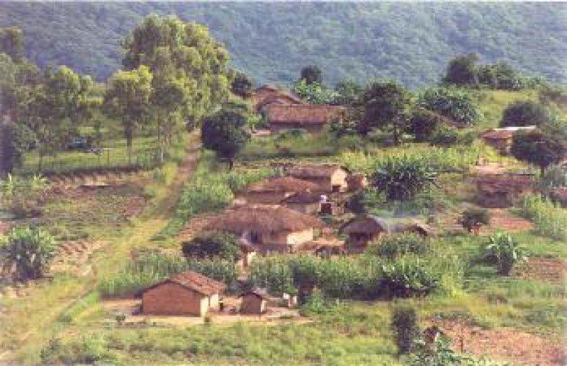 Die Mehrheit der malawischen Bevölkerung lebt auf dem Land in strohgedeckten Lehmhütten. Elektrizität und fließendes Wasser gibt es nicht. Fotos: Stefan Lüftl