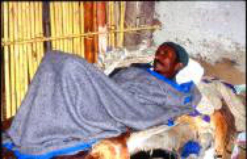 erkrankter Patient: Dengueinfektionen können schwer verlaufen und zu inneren Blutungen führen.