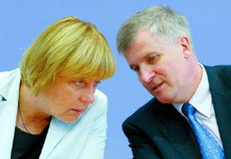 CDU-Parteivorsitzende Angela Merkel und Unionsfraktionsvize Horst Seehofer: Totalblockade oder Kooperation? Foto: phalanx