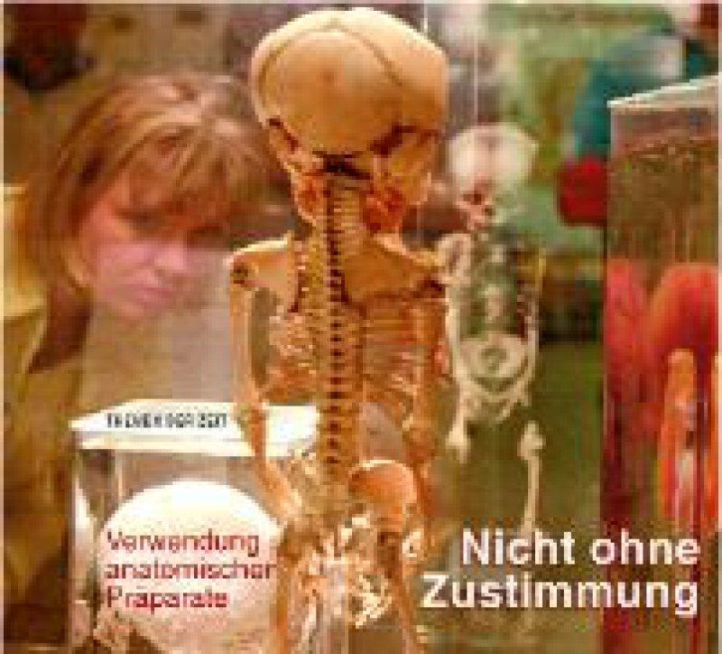 Rechtsfragen, die beim Umgang mit anatomischen Präparaten auftreten, behandelte Brigitte Tag im Titelaufsatz von Heft 15/2002.