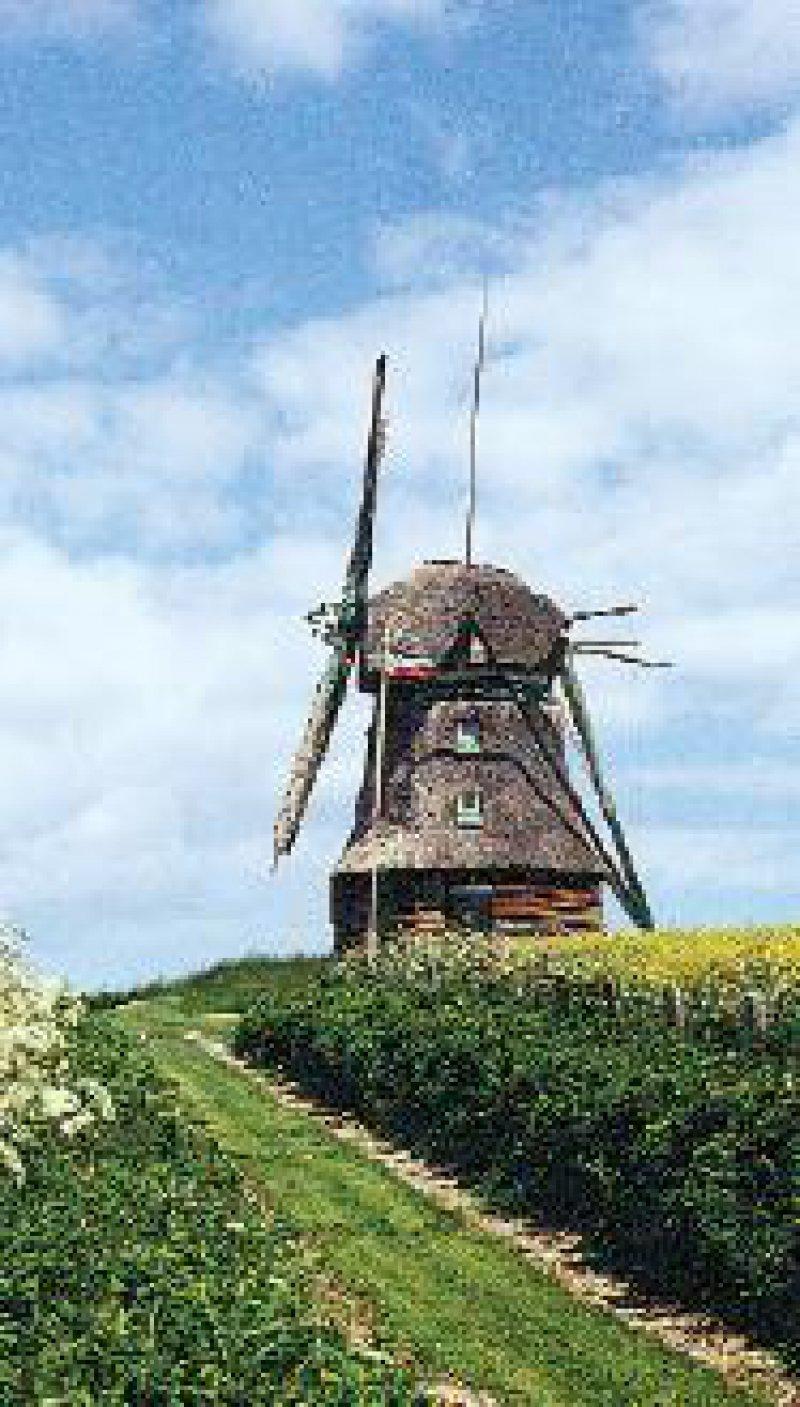 Die Farver Mühle – ein komfortables Feriendomizil Foto: privat