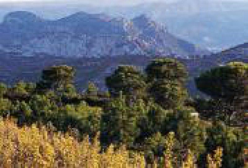Land Valencia: Erholung pur abseits der Metropole