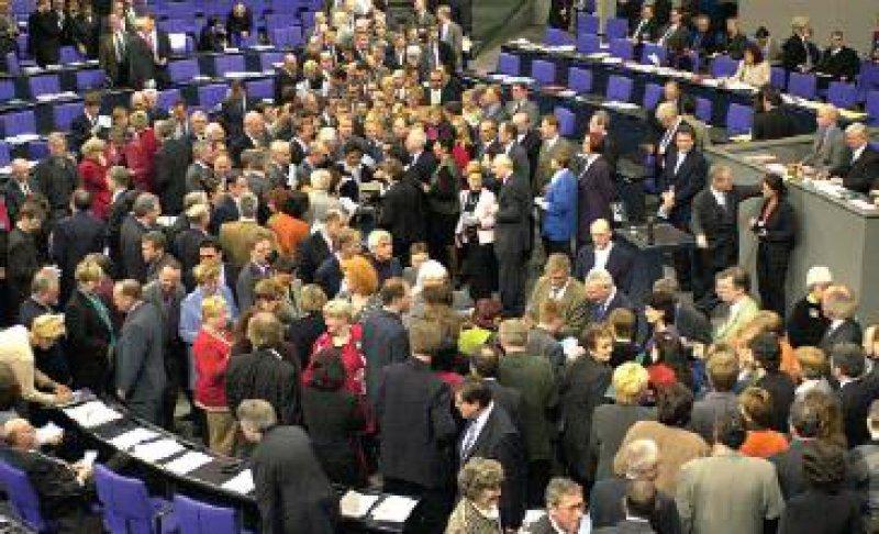 """Stammzellabstimmung im Deutschen Bundestag: Trend zu einer """"pragmatischen"""" Haltung Foto: dpa"""
