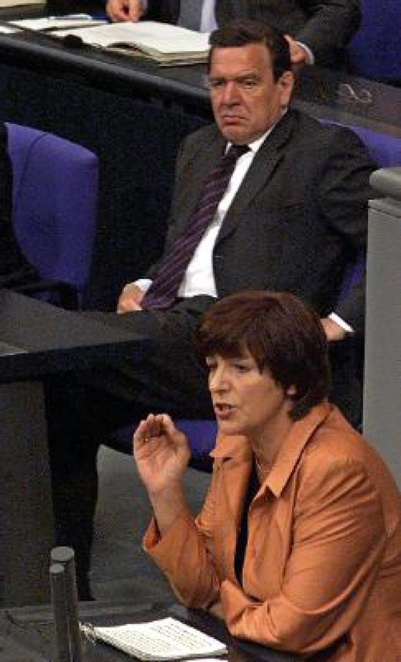 Kanzler Schröder, Ministerin Schmidt: Differenzen heruntergespielt Foto: ddp