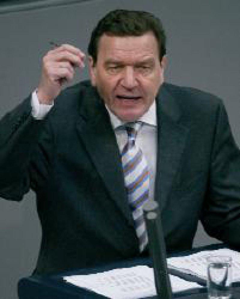 """Bundeskanzler Gerhard Schröder: """"Heulen und Zähneklappern"""" Foto: ddp"""