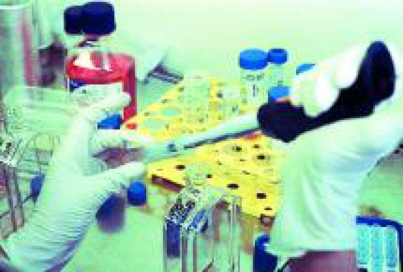Die EU-Kommission will die Forschung mit embryonalen Stammzellen fördern. Foto: epd