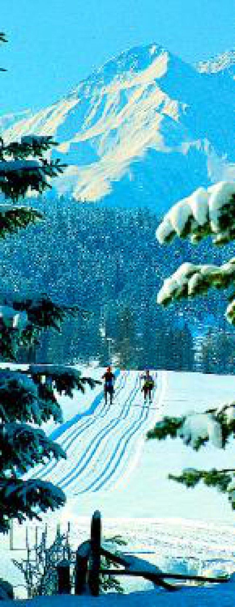 Gespurte Loipen und eine intakte Bergwelt in Tirol: ideal für Langläufer Fotos: Tirol Werbung