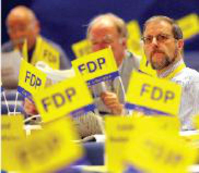 FDP für mehr Freiraum in der Forschung Foto: dpa