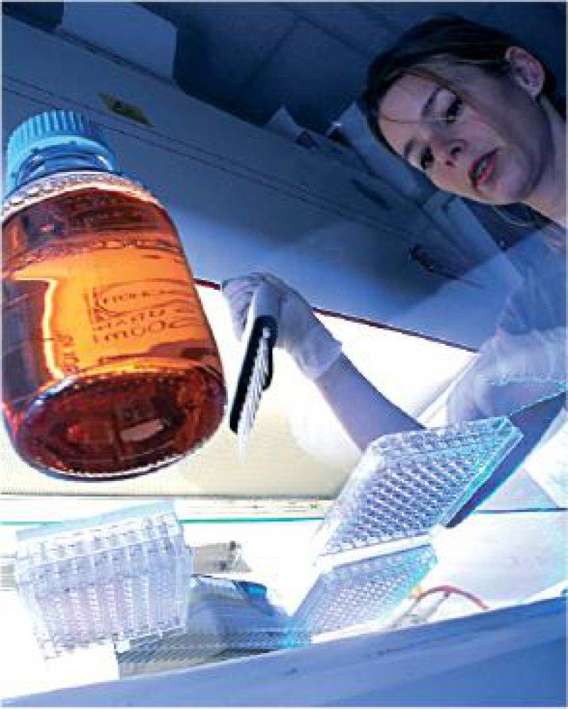 Laborreform: Die Anbieter arbeiten längst mit standardisierten Verfahren. Nun will auch die KBV mehr Einheitlichkeit im Laborgeschäft. Foto: Barbara Krobath