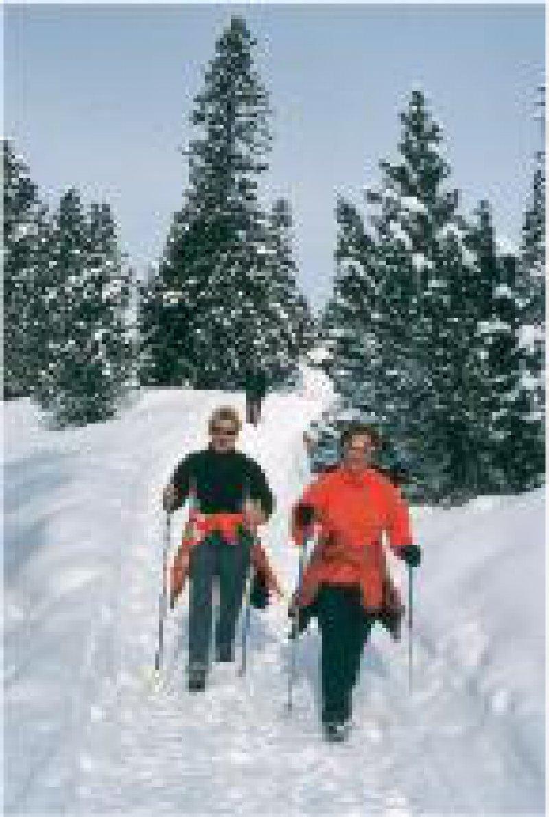 Schneewandern im Waadtland
