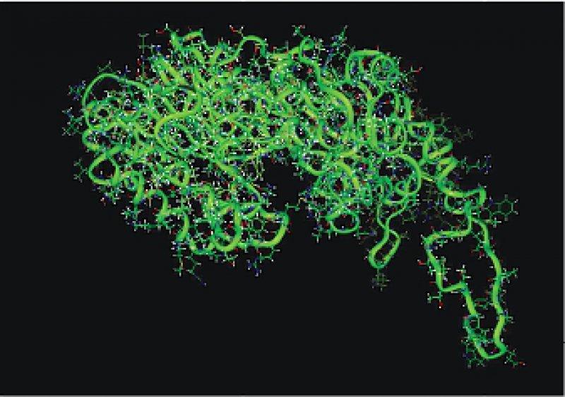 Dreidimensionale, computerunterstützte Darstellung der Methyltransferase, welche die Forscher mit Prüfsubstanzen zur Therapie von Krebserkrankungen blockieren wollen. Abbildung: Deutsches Krebsforschungszentrum