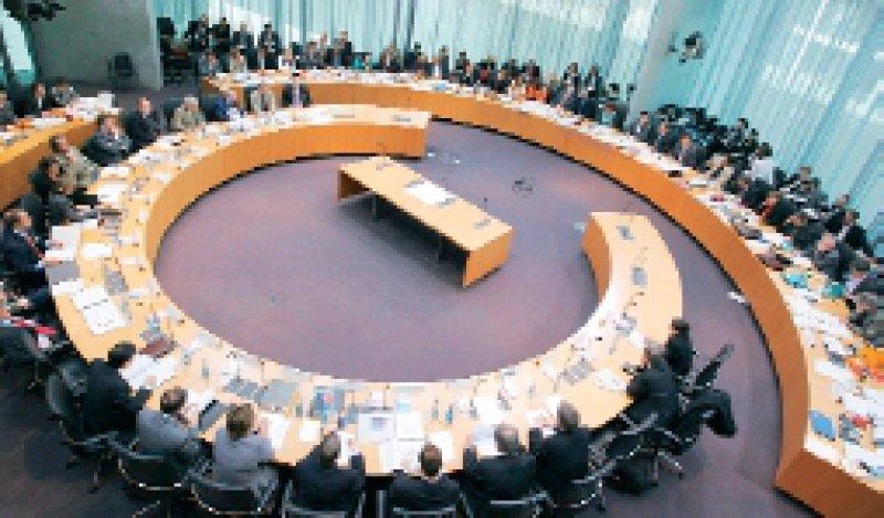 Diskussion über Liberalisierung: Experten äußerten sich am 9. Mai im Bundestags-Forschungsausschuss zur Stammzellforschung. Foto: dpa