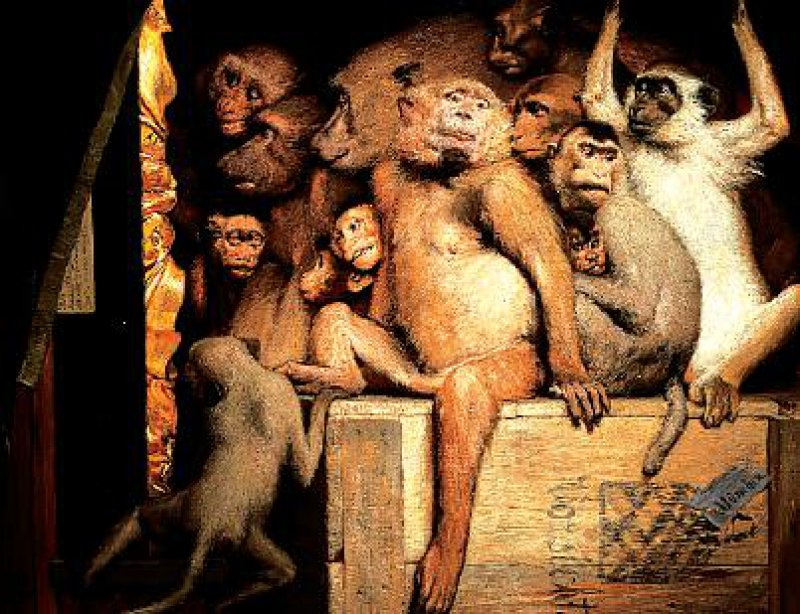 Gabriel Max, Die Affen als Kunstrichter, 1889, Öl auf Leinwand, 84,5 × 107,5 cm. Fotos: Wallraf-Richartz-Museums & Fondation Corboud