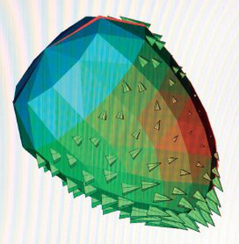 Darstellung der Myokardaktivierung mittels Rekonstruktion derepikardialen Stromdichte. Abbildung: Biomagnetic Diagnostic Systems