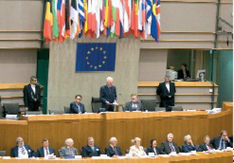 Kontroverse Debatte: Das Europaparlament beriet Ende September die Richtlinie zur Stärkung der Patientenrechte. Foto: dpa