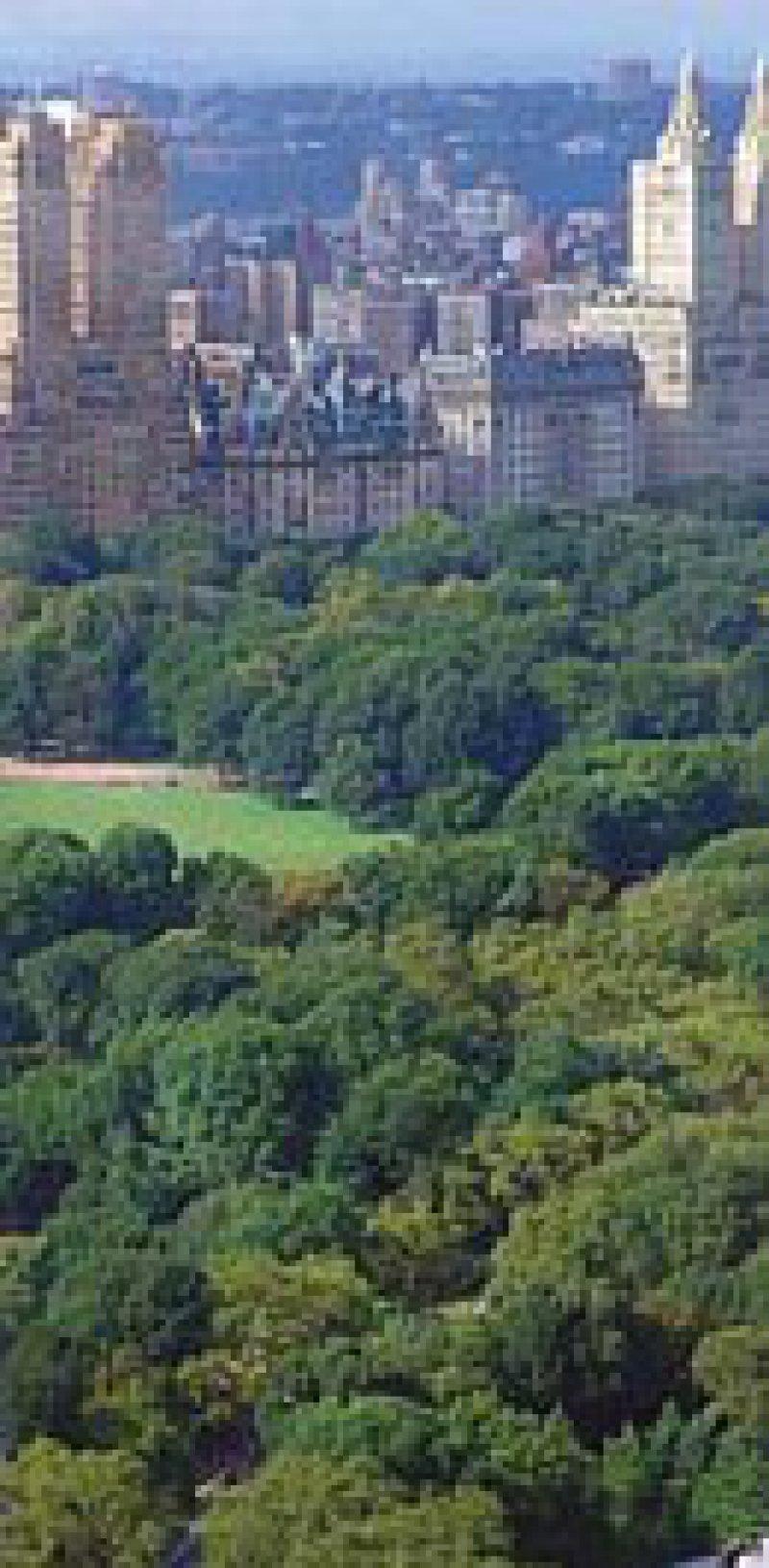 Central Park: Die NewYorker sind süchtig nach Grün.