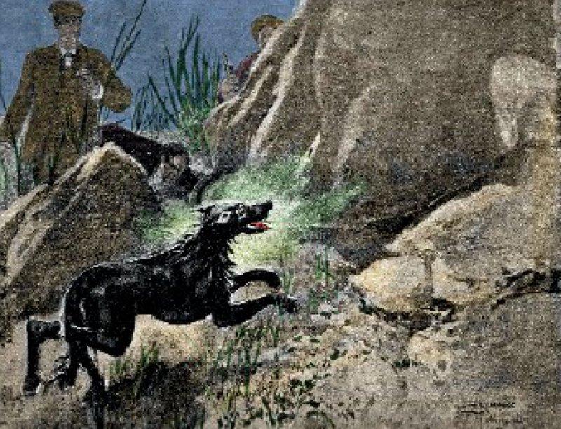 """Nach dem Tod von Sherlock Holmes verlangten die Leser neue Geschichten. In """"Der Hund der Baskervilles"""" taucht er wieder auf – eine Illustration aus dem Jahr 1902."""