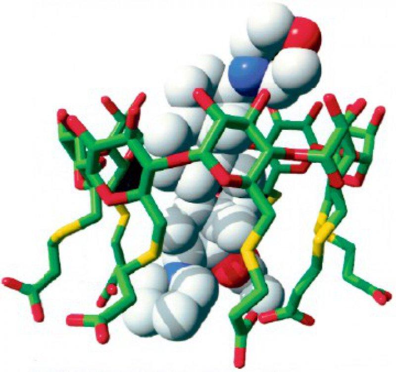 Rocuronium-Sugammadex- Komplex: Das Rocuronium-Molekül wird fernab des Rezeptors in der Blutbahn durch Sugammadex eingefangen und in einen stabilen Komplex überführt. Foto: Hill & Knowlton GmbH