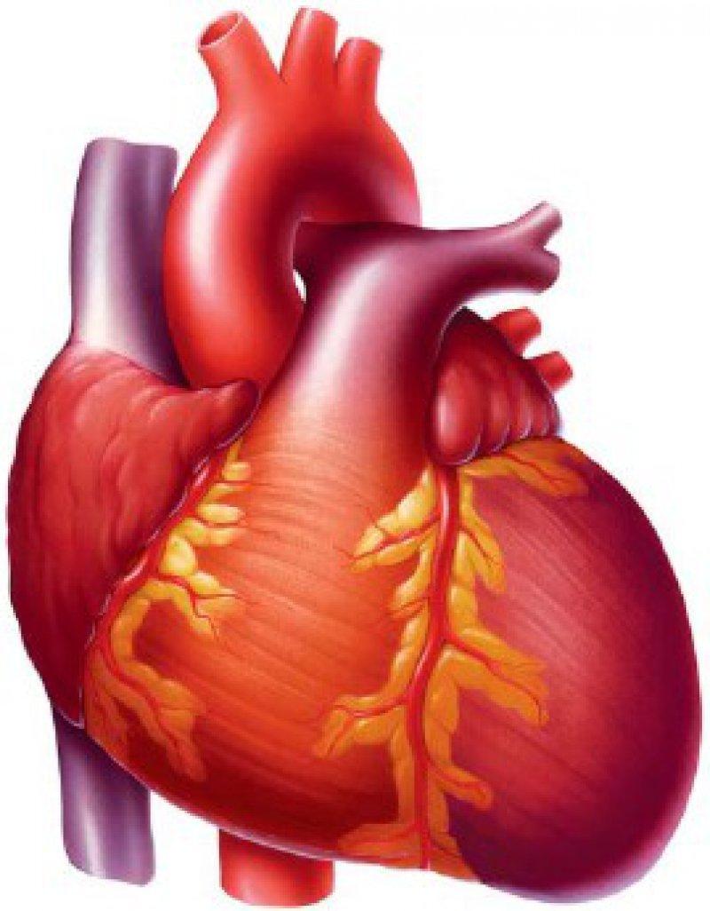 Die chronische Herzinsuffizienz hat bei Personenüber 45 Jahren eine Prävalenz von 3,1 Prozent.Foto: mauritius images