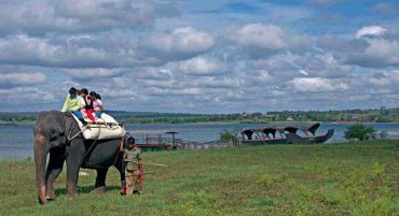 Ein Leben mit den Menschenkindern: Meenakshi arbeitet seit einiger Zeit als Hotel-Elefant am Kabini River.