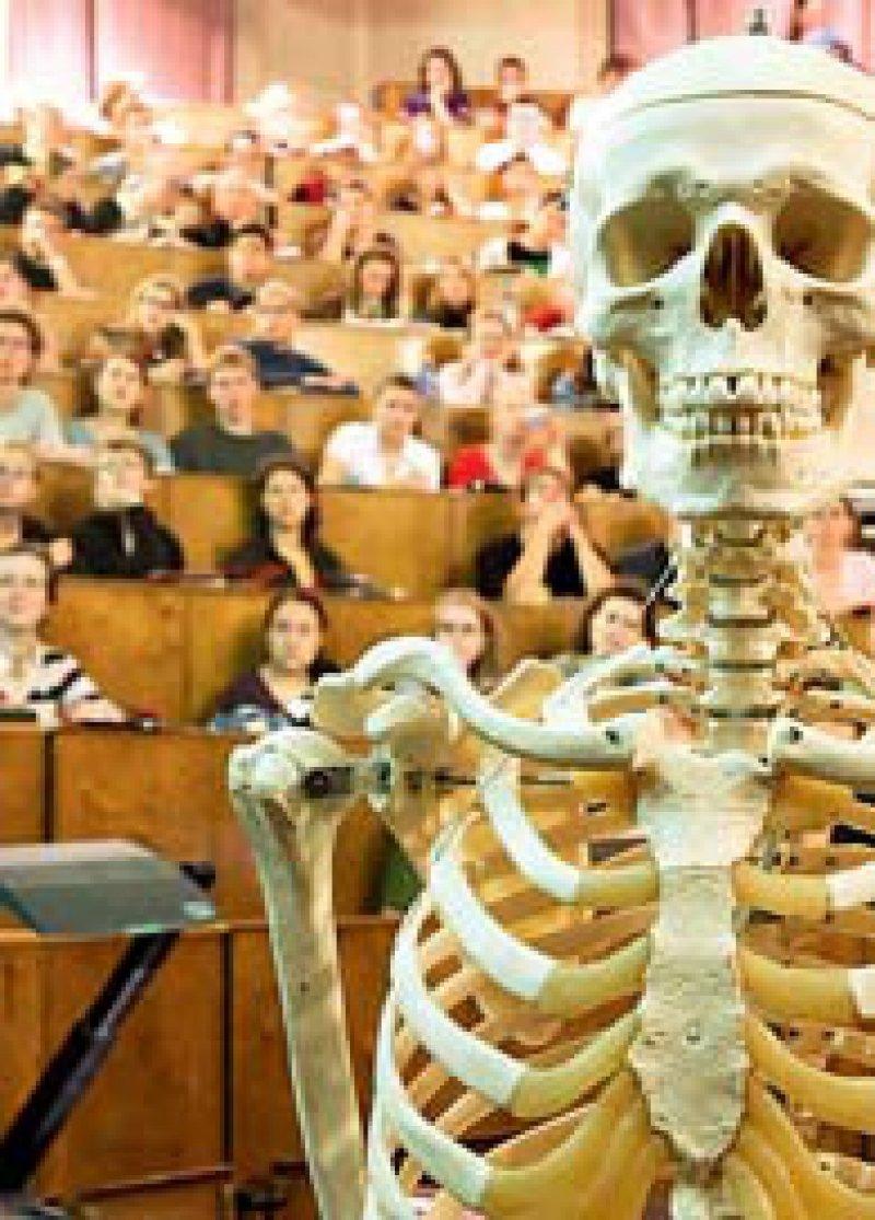 Nicht nur Theorie im Hörsaal: Der neue Berliner Studiengang soll praxisorientiert sein. Foto: Keystone