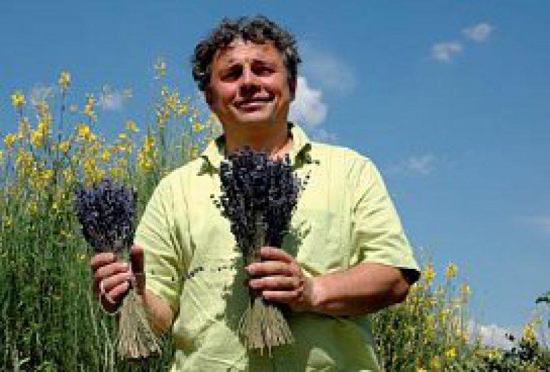 Duftende Felder so weit das Auge reicht: Jean-Elie Laget handelt mit Heilpflanzen und schwört auf die euphorisierende und zugleich beruhigende Kraft des Lavendels. Fotos: Claudia Diemar