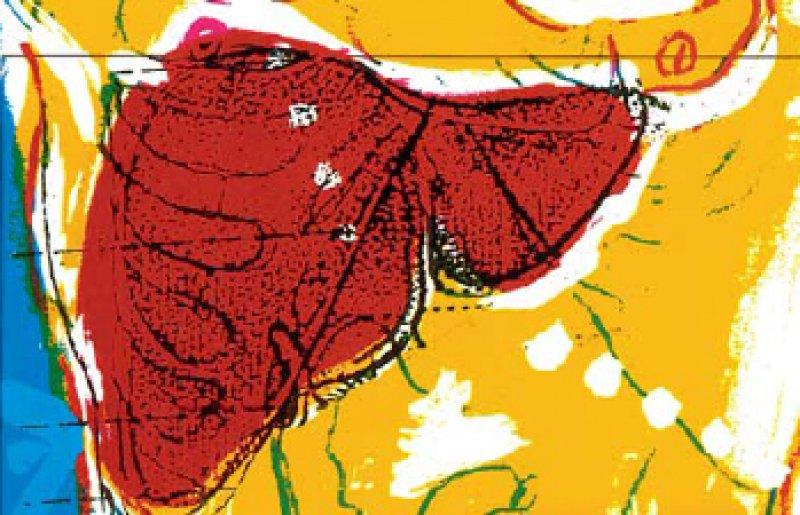 Viele Lebererkrankungen sind eng mit dem Darm verknüpft wie die Fettleber oder die nichtalkoholische Steatohepatitis. Foto: Schering