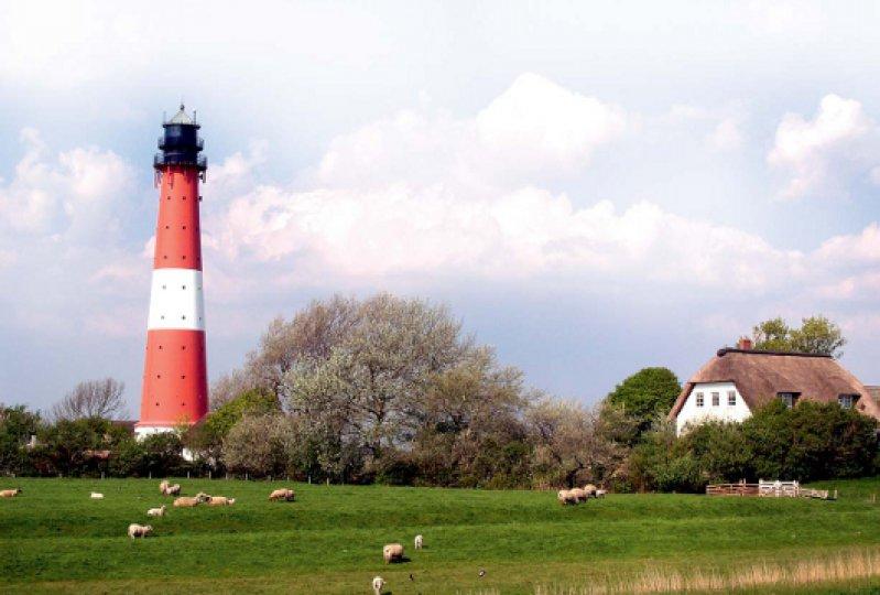 37 Quadratkilometer grünes Land – auf Pellworm kann man auf originelle Art heiraten. Auf dem alten Leuchtturm haben sich schon mehr als 2 600 Paare das Jawort gegeben. Foto: Bernd Schiller