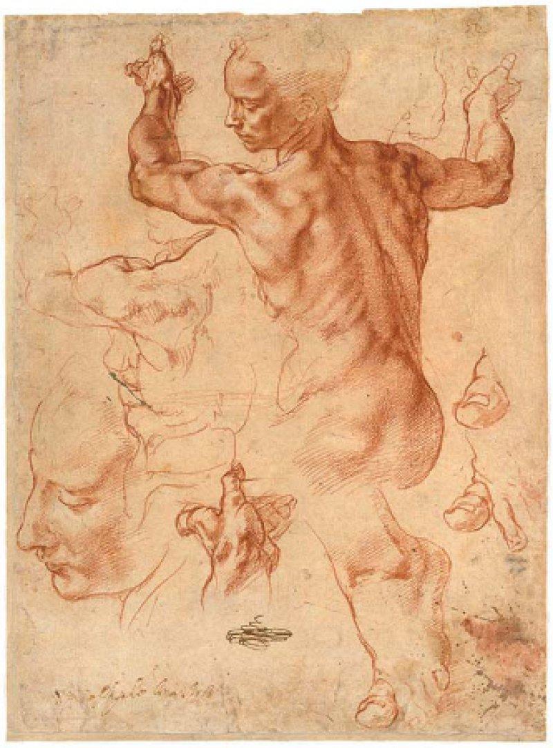 """Michelangelo Buonarroti: Studien für die """"Libysche Sibylle"""" (Recto), 1511/12, Rötel (28,9 × 21,4 cm): Keine Frau, sondern ein junger Mann stand Michelangelo Modell für seine Zeichnung der Libyschen Sibylle, einer Vorstudie für sein berühmtes Fresko an der Decke der Sixtinischen Kapelle. Michelangelo benutzte die anatomische Skizze, um die zentralen Elemente in der Körperhaltung der antiken Seherin festzuhalten: die extreme Verdrehung von Schultern und Hüfte, die geöffneten Arme und Hände (die auf dem Fresko ein Buch halten) und die Art und Weise, wie sie ihr Körpergewicht auf den Zehen balanciert. Neben die Rückenansicht zeichnete er noch einzelne Körperteile wie einen zweiten etwas größeren Kopf. Im Hintergrund scheinen Spuren einer ersten Skizze durch. © 2007, The Metropolitan Museum of Art/Art Resource/Scala, Florenz"""