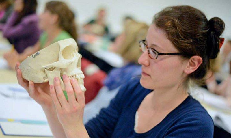 40 Erstsemester studieren seit Anfang Oktober im niedersächsischen Oldenburg Medizin. Foto: Nordwest-Zeitung Verlagsgesellschaft mbH & Co. KG/Torsten von Reeken