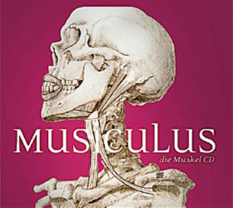 Musiculus – die Muskel-CD (Cover). Quelle: Lisa Stern