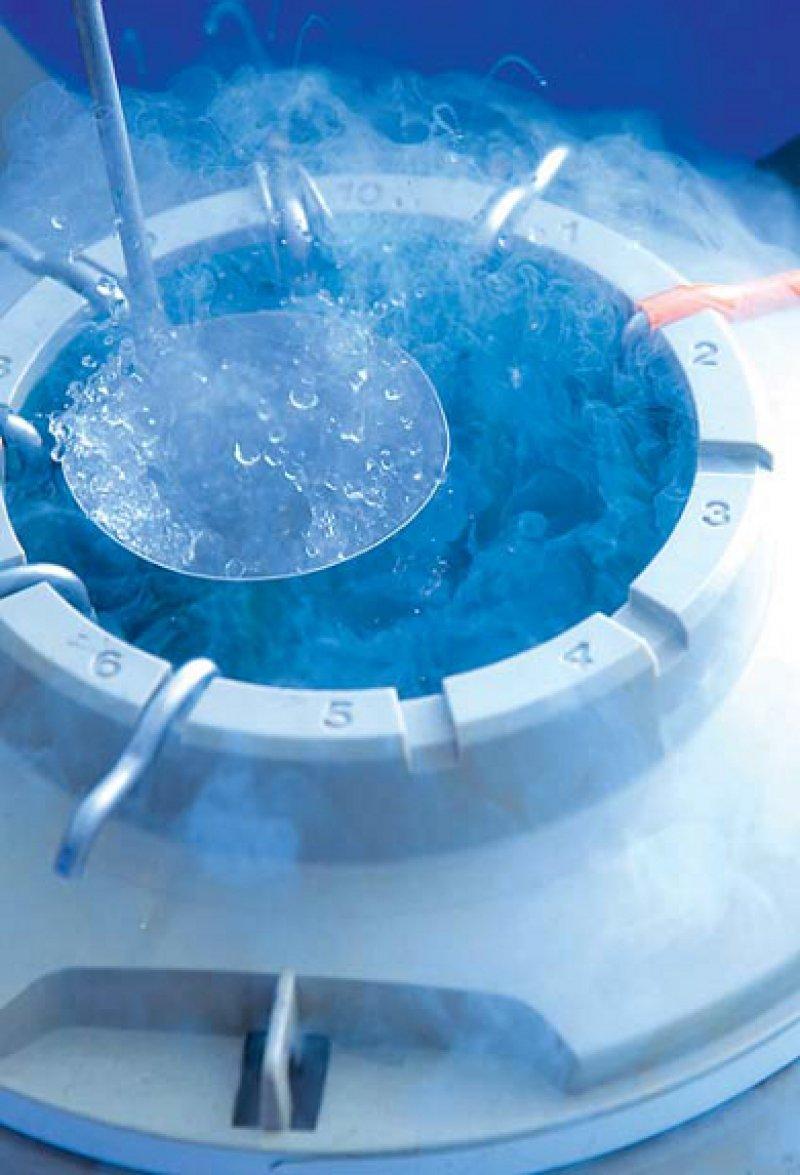 """Deutlich ausgeweitet hat sich die Gefrierlagerung von Keimzellen und Embryonen − bis hin zum """"Sozial Freezing"""". Foto: picture alliance"""