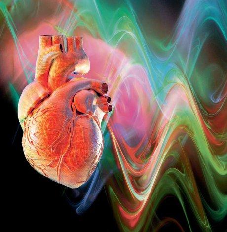 Diabetes und kardiovaskuläres Risiko