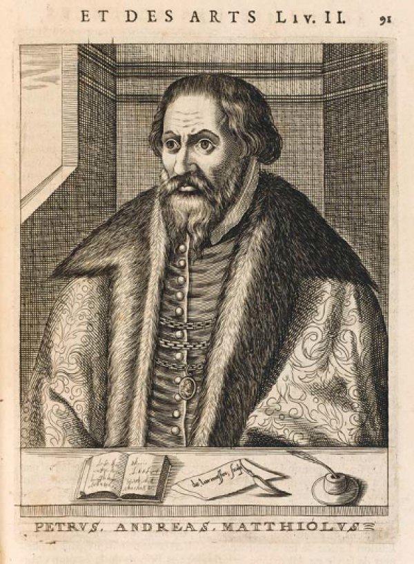 Pierandrea Mattioli (1501–1577), italienischer Arzt und Botaniker, war Leibarzt am Habsburger Hof in Prag. Fotos: pictue alliance