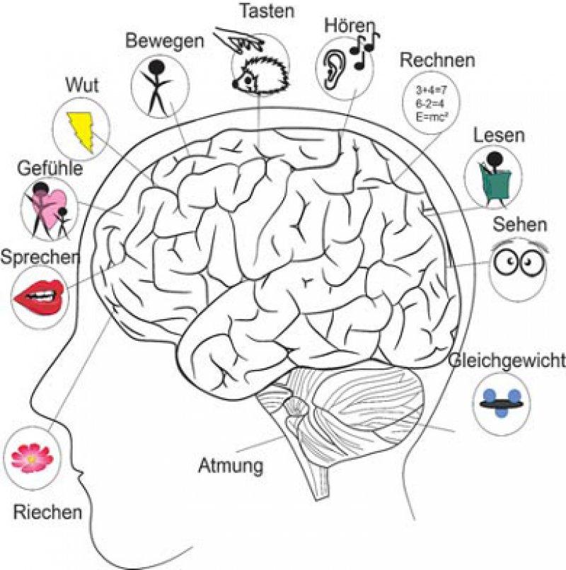 Illustration aus dem Online-Ratgeber, © RUB, Grafik: Bierstedt