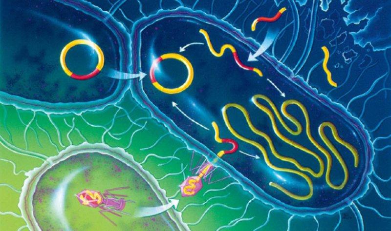 Foto: Bryson Biomedical Illustrations/SPL Agentur Focus
