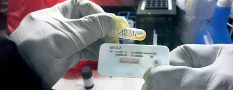 Ein Schnelltest auf Ebolavirus bei der Validierung in Afrika. Die Firma Senova in Weimar hat ihn entwickelt. Foto: Senova