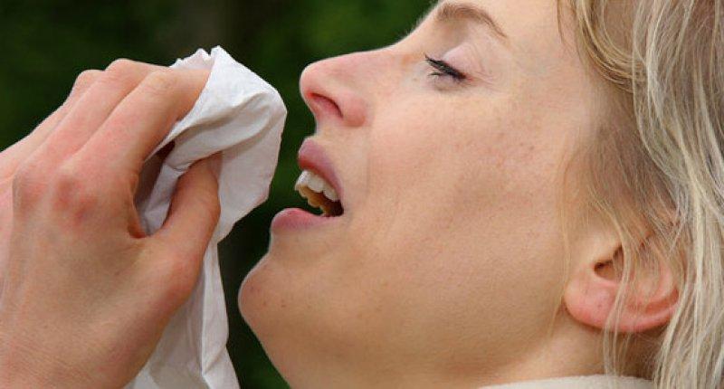 Grippe/Influenza