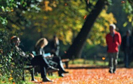 Spaziergänge eines Psychotherapeuten
