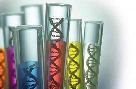 Genanalysen in der Gynäkologie