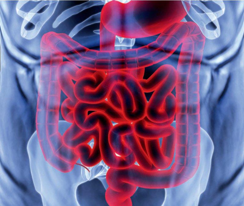 Darmkrebs: Neuer Früherkennungstest wird Kassenleistung