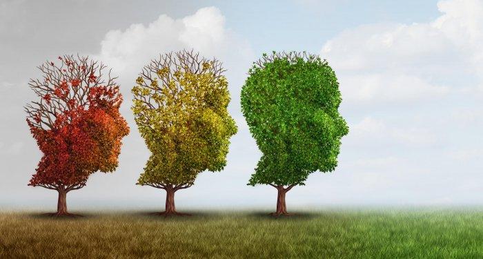 Demenzprävention: Kreuzworträtsel wird ärztlichem Rat vorgezogen