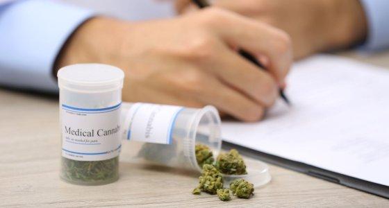 Verordnung von medizinischem Cannabis wird dokumentiert. /Africa Studio, stock.adobe.com