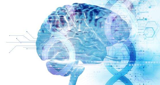 Gehirn und DNA /monsitj, stock.adobe.com