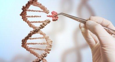 Genom-Editing soll Cholesterinwert dauerhaft senken